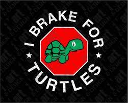 Svg Dxf Png I Brake For Turtles Decal Instant Download Etsy