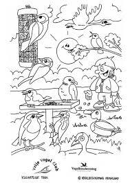 Kleurplaat Vogels In Het Park Gratis Kleurplaten Om Te Printen