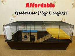 affordable indoor guinea pig cages