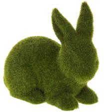 Image result for green rabbit pics