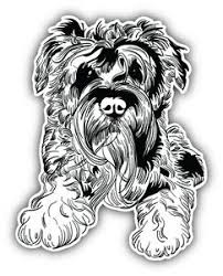 Miniature Schnauzer Dog Sketch Car Bumper Sticker Decal 4 X 5 Ebay