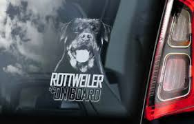 Rottweiler Car Sticker Rottie Beware Of Dog Window Sign Decal Gift Pet V06 Ebay