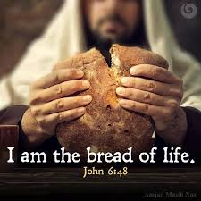 "I am the bread of life."" -Jesus... - Bible Verses, Encouragements ..."