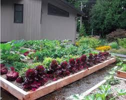 grow up build an edible rooftop garden