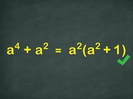 3 ways to simplify algebraic fractions