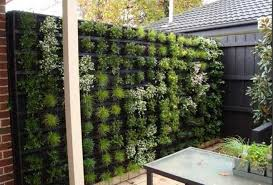 Pin On Garden Landscape