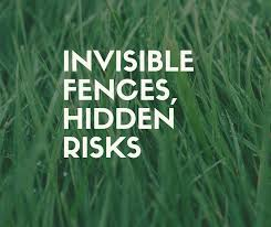 Read This Before Choosing An Electric Fence Invisible Fence Dog Recall Electric Fence