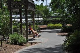 mercer arboretum and botanic gardens