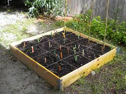 square foot gardening gardening
