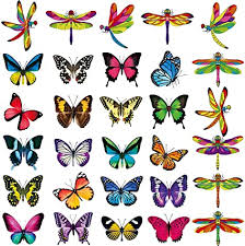 Amazon Com 30 Pieces Anti Collision Window Clings Dragonfly Butterfly Window Decals Non Adhesive Vinyl Window Clings Stickers To Prevent Bird Strikes On Window Glass Arts Crafts Sewing