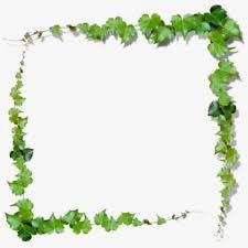 set use leafy frame green svg vector