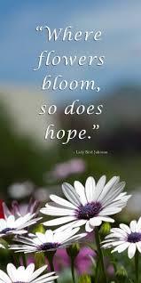where flowers bloom so does hope lady bird johnson flower