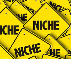 Social Media Platforms That Cater To Your Niche! - Simply Social You