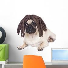 Rasta Pug Dog Wall Decal Wallmonkeys Com