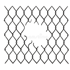 Chain Link Fence Damaged Vector Stock Vector Illustration Of White Jail 148341791