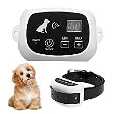 10 Top Rated Wireless Dog Fences Reviews In 2020 Dog N Dogs