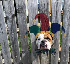 This Bulldog Loves Watching The Street Through A Hole So His Owners Paint 2 Costumes On The Fence Bored Panda