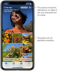 Ver Fotos Y Videos En El Iphone Soporte Tecnico De Apple