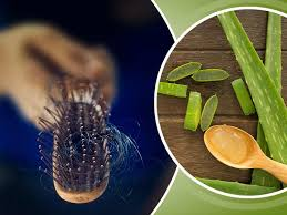use aloe vera gel for healthy hair