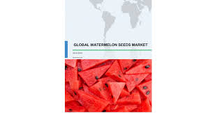 watermelon seeds market size share