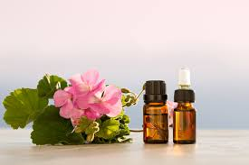Geranium Essential Oil | Geranium essential oil, Essential oil for ...