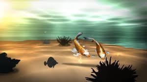 koi 3d fish pond live wallpaper you