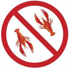 З 1 серпня по 15 вересня на водоймах Чернігівщини заборонено ...