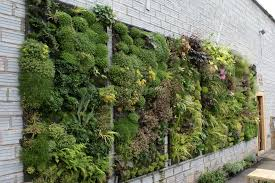 vertical wall garden ideas garden