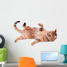 Brown Cat Breed Bengal Wall Decal Sticker By Wallmonkeys Vinyl Peel And Stick Graphic 24 In W X 14 In H Walmart Com Walmart Com