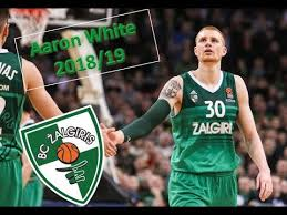 Aaron White ○ Žalgiris Kaunas ○ 2018/19 Best Plays & Highlights ...