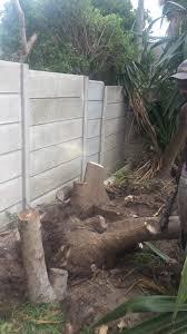 cape tree felling