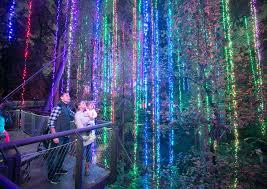 atlanta botanical garden lights 2018
