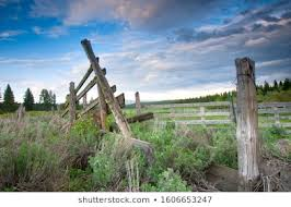 Barbed Wire On Fence Post Images Stock Photos Vectors Shutterstock