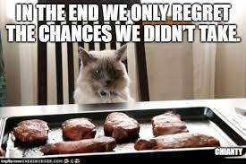 Regrets, i had a few - Lolcats - lol | cat memes | funny cats ...