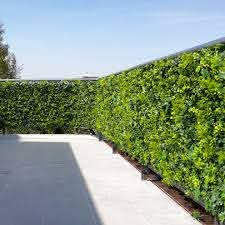Balcony Terrace Outdoor Dining Privacy Fence Artificial Hedge Panels Modern Patio Houston By Greensmartdecor