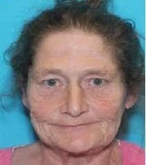 Critical Missing – Teresa Johnson   DPD Beat