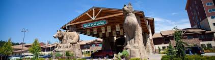 great wolf lodge guide to family fun