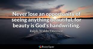 ralph waldo emerson never lose an opportunity of seeing