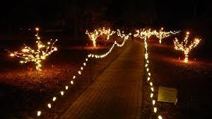 lights in hopelands gardens