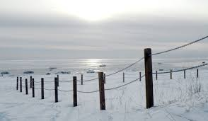 Fence For Dunes Hits Barriers Efforts To Protect Kasilof Beach More Complex Than Anticipated The Mouth Of The Kenai