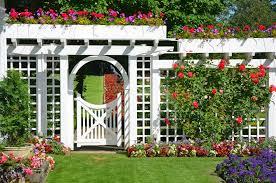 garden trellis ideas arch freshworks