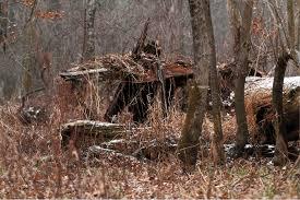 build a natural deer hunting blind