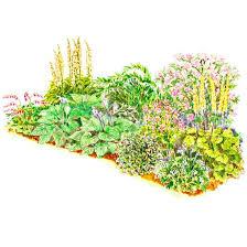 shade garden plans better homes gardens