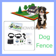 China Underground 2500 Square Meter Electronic Pet Dog Fencing System With 2 Rechargeable Collars China Dog Fence System And Outdoor Dog Fence Price