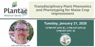 Transdisciplinary Plant Phenomics and Phenotyping for Maize Crop  Improvement with Seth Murray - Plantae Community