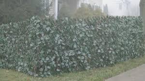 Wicker Park Single Expandable Faux Ivy Privacy Fence Qvc Com