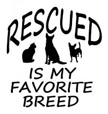 Pet Rescue Vinyl Decal Rescued Is My Favorite Breed Cowgirls Loft