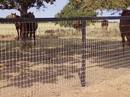 12 1 2 Ga No Climb Horse Wire