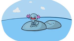 Wooper and quagsire : pokemon