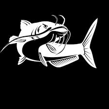 Catfish Fish Vinyl Creative Car Decal Car Styling Decals White Black L193 Car Stickers Aliexpress
